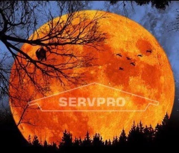 Fire Damage Planning Halloween the SERVPRO way!